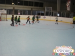 2013 Total Youth Hockey Experience