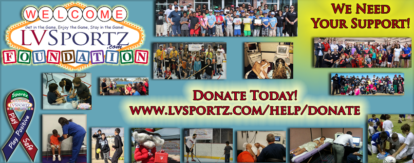 LVSF General Fundraising WebsitePage