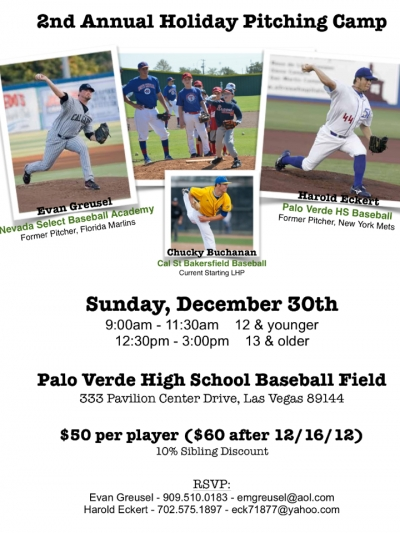 2nd Annual Holiday Pitching Camp