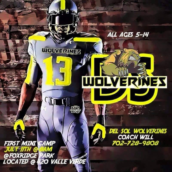 Del Sol Wolverines Youth Football Team Looking for Players & Cheerleaders - Summer Mini Camp