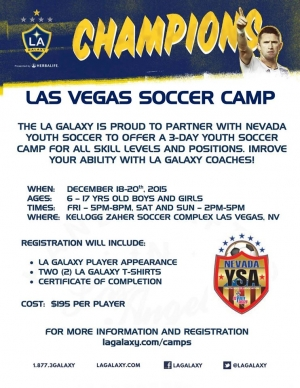 L.A. Galaxy Winter Youth Soccer Camp