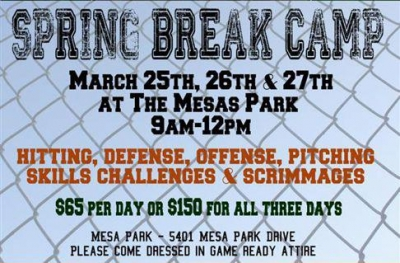 Premier Baseball's Spring Break Camp
