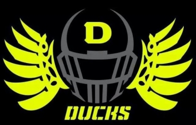 LV Ducks Youth Football Team Looking for Players